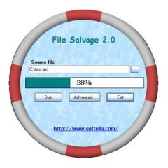 ������� ��������� File Salvage