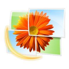Скачать бесплатно Windows Live Photo Gallery