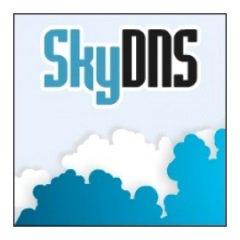 Скачать бесплатно SkyDNS