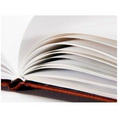 Скачать бесплатно Печать книгой